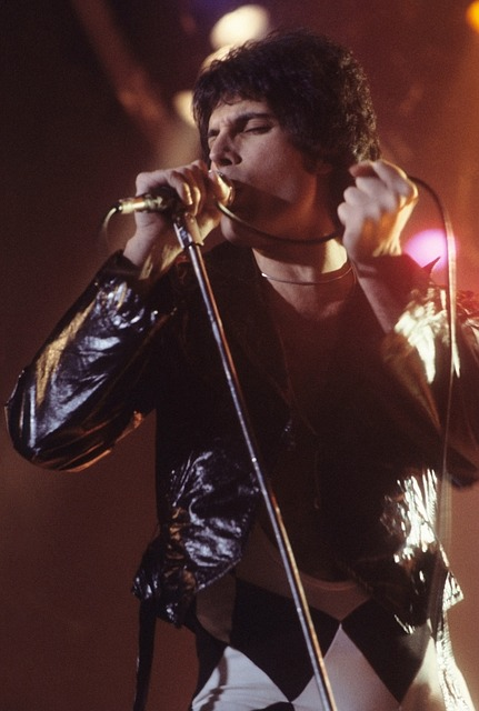 Top Five: Bohemian Rhapsody trailer video goes viral